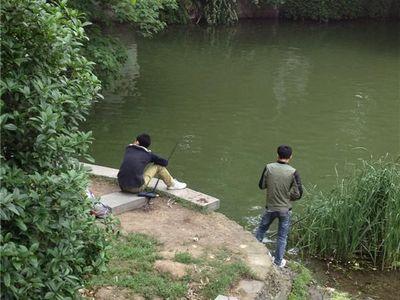 包河公园不少市民岸边垂钓